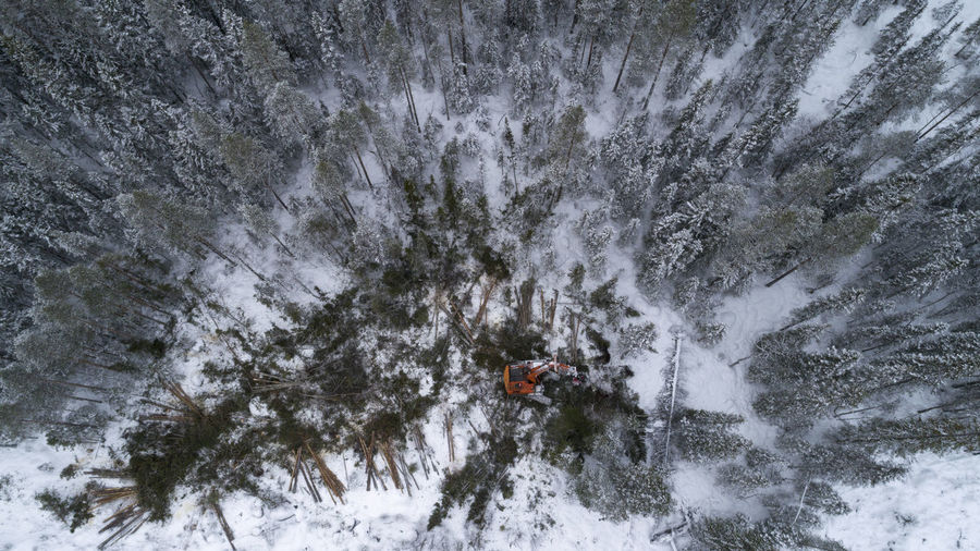High angle view of forestry machinery in forest during winter