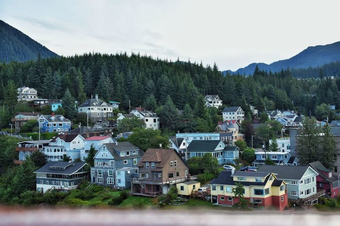While on a cruise in Alaska I captured this overlook Tree Mountain Residential Building House Sky Architecture Building Exterior Landscape Built Structure TOWNSCAPE Housing Settlement Town