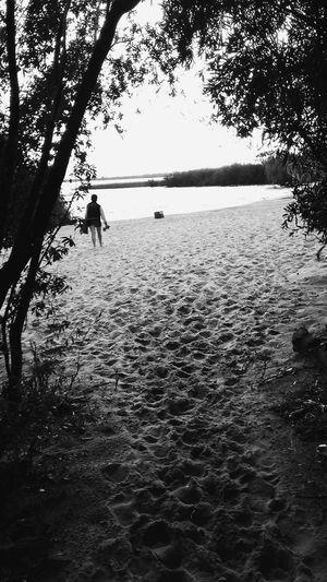 Vscocam Playa BeachOutside Camino Arboles , Naturaleza Blackandwhite Photography Blackandwhite Arena Rio Huellas Hidden Gems  Hiddengems