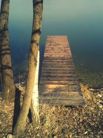 Pier Wooden Wooden Deck Tranquil Scene Tranquility Meditation Where Are You Going? Light And Shadow Calm Calm Water Dry Grass Tree Trunk Birch Tree