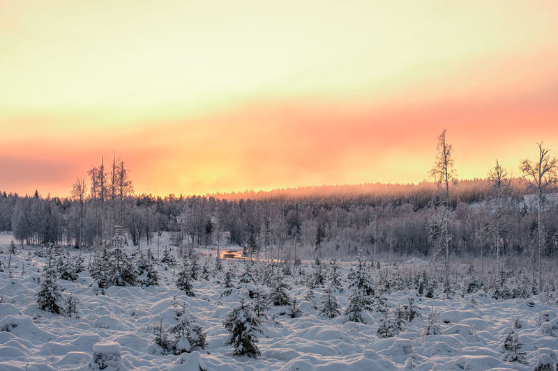 Scenic view of frozen field against sky during sunset