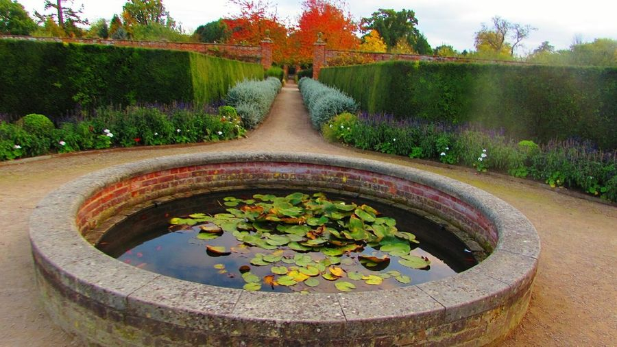 October 2017 Fountain Water Flower Plant Tree Park - Man Made Space Flowerbed Wimpole Hall, Walled Garden National Trust 🇬🇧 October2017🍂🍁💛 Autumn October Wimpole Estate