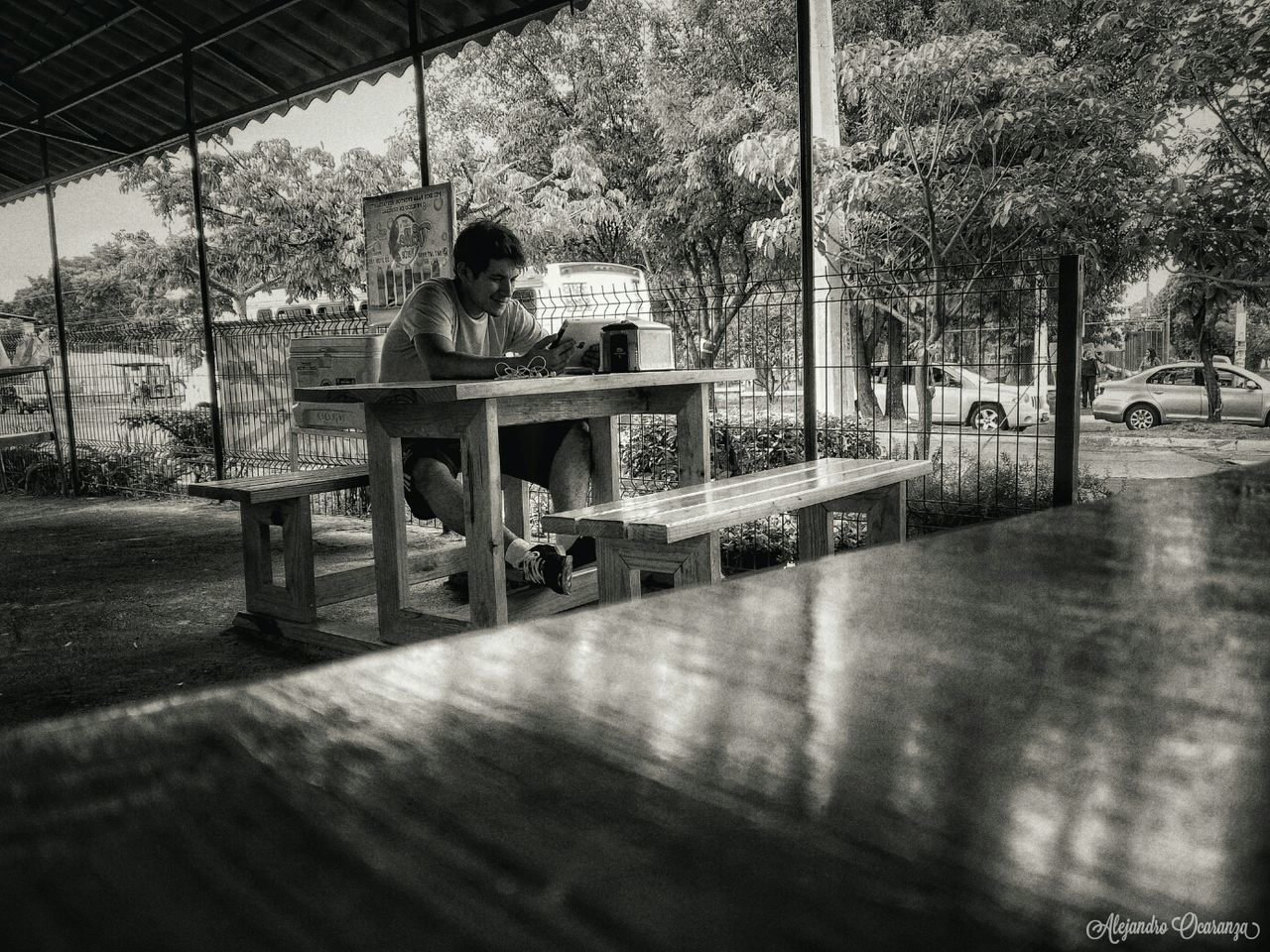 sitting, one person, full length, day, table, real people, tree, relaxation, indoors, nature, young adult, adult, people