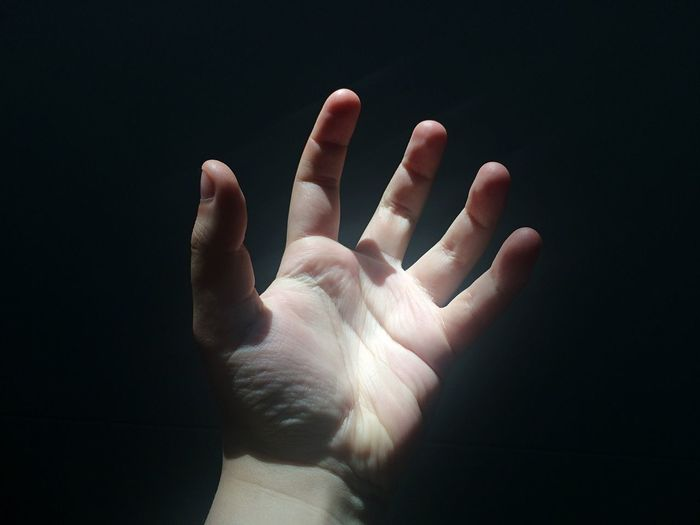 Close-Up Of Hand Of Person