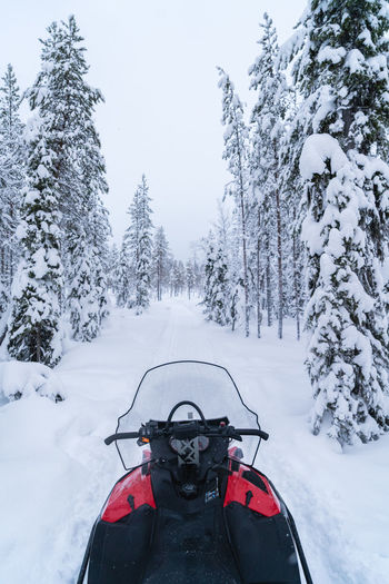 The Great Outdoors - 2018 EyeEm Awards The Traveler - 2018 EyeEm Awards Beauty In Nature Cold Temperature Finnland Forest Mode Of Transportation Nature Outdoors Scenics - Nature Snow Snowmobile Sport Transportation Travel Destinations Tree White Color Winter