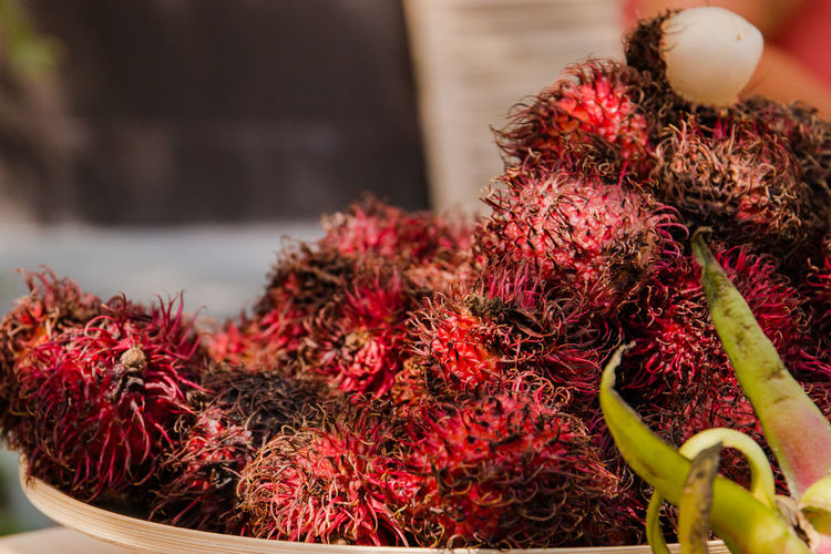 Rambutan Abundance Close-up Day Flower Focus On Foreground Food Food And Drink For Sale Freshness Fruit Healthy Eating Large Group Of Objects Lychee Market No People Plant Red Selective Focus Still Life Tropical Fruit Wellbeing