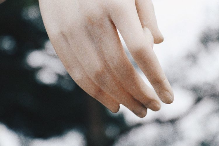 Close-up sculpture of hand