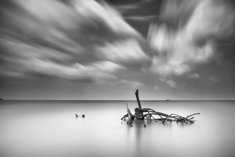 Driftwood In Sea Against Cloudy Sky