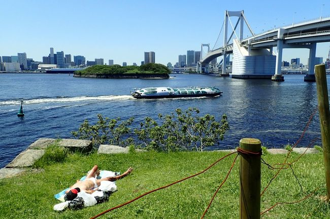 Away from throng of people; sun-tanning at Daiba Park, overlooking #rainbowbridge with a himiko waterbus cruising by heading towards Asakusa Pier via Sumidagawa (Sumida River). Ultimate Japan Odaiba Odaibacity Odaiba Tokyo Tokyo Japan Minatoku Relaxation Sun Tanning Rainbow Bridge Himiko Water Bus  Tokyo Bay Spring Live The Moment  Live The Life Quietness Solitary Peace And Quiet Peace Clear Sky Summer Sunny Hot Day Bridge Neighborhood Map The Street Photographer - 2017 EyeEm Awards Summer Road Tripping