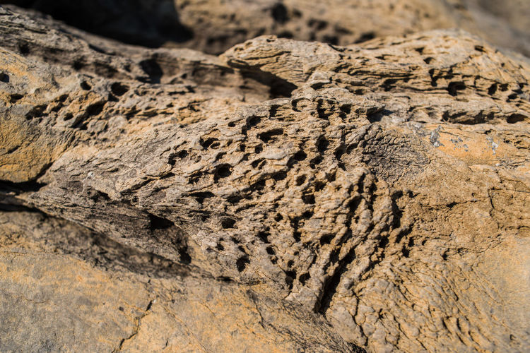 Rock Formation Backgrounds Close-up Day Lava Liguria Mountains Nature No People Outdoors Punta Chiappa Rock - Object Stone Textured