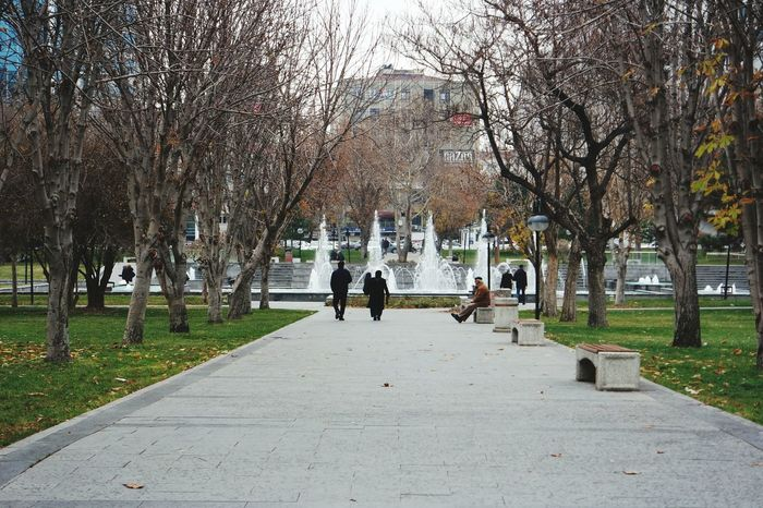 Son. Outdoors Grass Water Architecture City Park Real People Tree Fiskiye Turkey💕 Be. Ready. AI Now