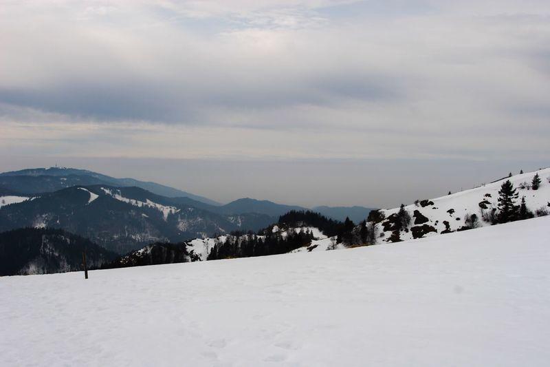 Snow Winter Cold Temperature Weather Mountain Sky Nature Scenics Mountain Range Landscape Beauty In Nature GERMANY🇩🇪DEUTSCHERLAND@ Blackforest