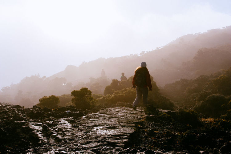Hiking Lava Flow Morning Light Beauty In Nature Fog Hiking Landscape Lava Field Lava Rocks Mist Misty Morning Nature Non-urban Scene Outdoors Piton De La Fournaise Rear View Scenics - Nature Sky Tranquil Scene Tranquility Travel Destinations Volcanic Landscape Volcanic Rock Volcano Walking Rear View One Person Hiking Travel Beauty In Nature The Great Outdoors - 2018 EyeEm Awards