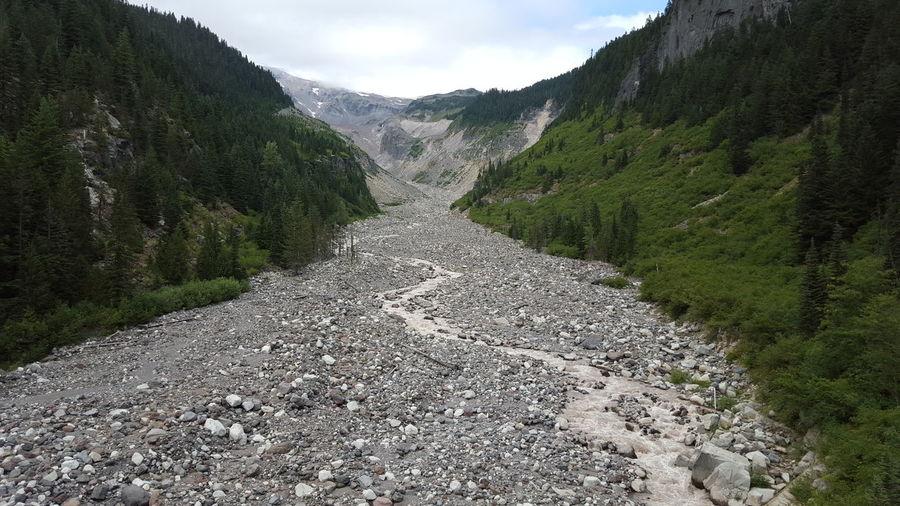 Dried Up Creek Bed Mt. Rainier