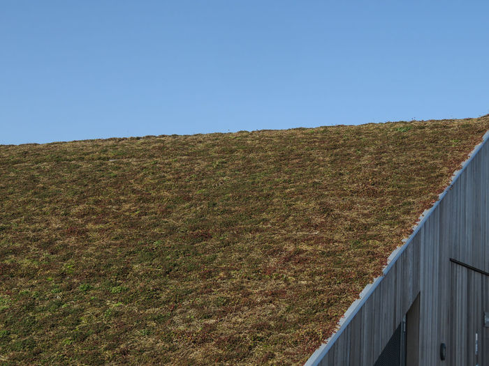 Geometric Shape Roof Green Roof Planted Clear Sky Sunny Sky Rooftop 17.62°