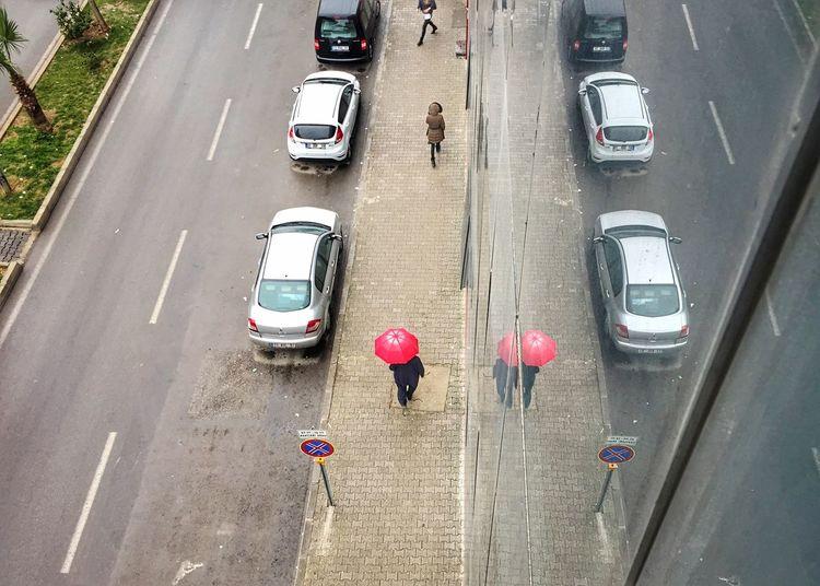Adapted To The City Redumbrella Human Reflection Sidewalk Ctiy Car Cars