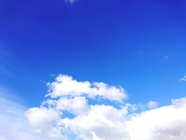 Blue Sky No People Cloud - Sky Day Nature Outdoors Low Angle View Summer Flying Sky Only Beauty In Nature Freshness Sky Photography Clouds Clouds And Sky Beauty In Nature Backgrounds Sky Blue Sky Background Sky Blue And Clouds