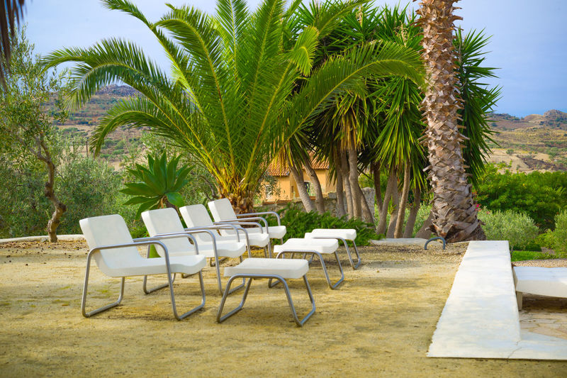Chair Day Green Color Holiday Italy Nature No People Outdoors Palm Palm Tree Palm Tree Pool Pool Chairs Poolside Sicily Table Travel Tree Vacations