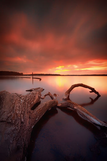 Alter Baum Beauty In Nature Cloud - Sky Day Horizon Over Water Idyllic Marode Morsches Holz. Nature No People Non-urban Scene Orange Color Outdoors Reflection Rock - Object Salt - Mineral Salt Basin Salt Flat Scenics Sea Sky Sunset Tranquil Scene Tranquility Water