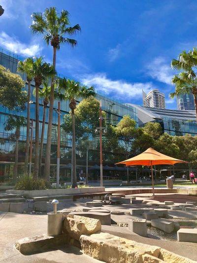 Australia 2018 EyeEm Sidney Australia Bilding Hanging Out Hello World Enjoying Life