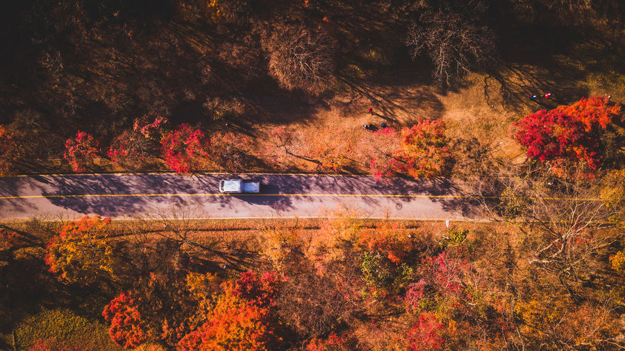 Korea Autumn Beauty In Nature Branch Change Day Forest Growth Land Vehicle Leaf Mode Of Transport Nature No People Outdoors Scenics Tranquility Transportation Tree Water