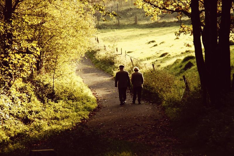 Nature Love Old People People Watching Sunny Day Capture The Moment Photos That Will Restore Your Faith In Humanity How You Celebrate Holidays Photographic Memory