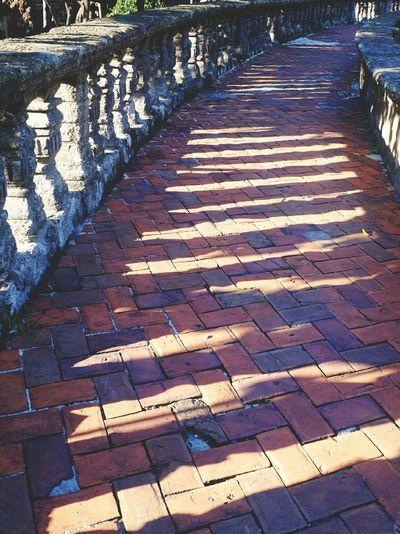 Bricks Pavement Stone Bricks Brick Pavement Brick Path Paco Park Manila Fujifilm_xseries