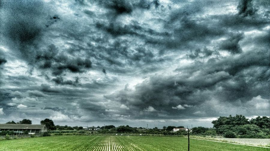 Taking Photos Relaxing Enjoying The View Sky And Clouds Enjoying Nature Sky_collection Country Life Rice Field Check This Out Photography