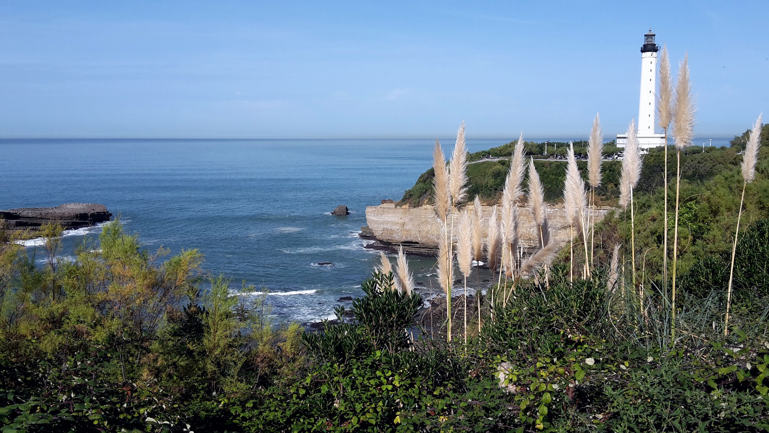 sea, horizon over water, water, tranquility, tranquil scene, scenics, clear sky, nature, plant, blue, beauty in nature, grass, sky, built structure, beach, growth, day, outdoors, architecture, no people