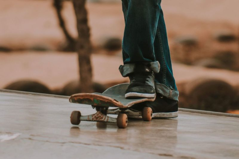 Wheels are life Skateboarding Skate Focus On Foreground Close-up Low Section Animal Wildlife Selective Focus First Eyeem Photo