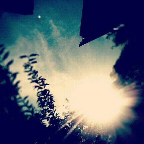 The Sun Struck