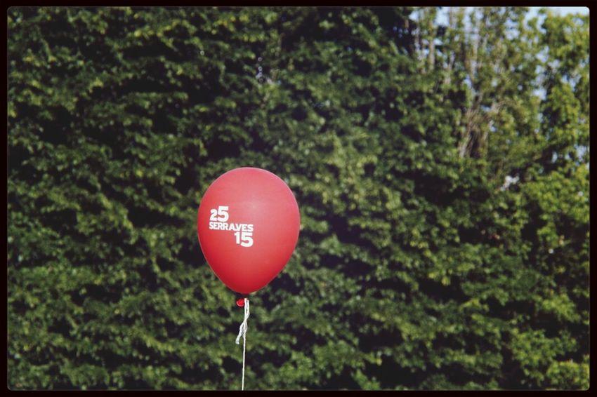 Serralves Em Festa Balloon