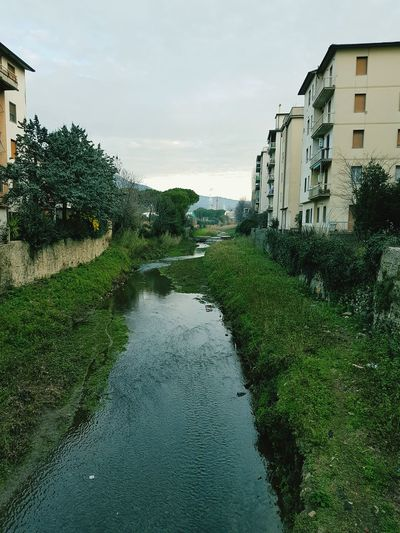 Cita Tranquil Scene Matina Beauty In Nature Calma Firenze, Italy.
