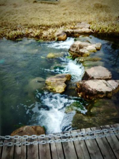 Memories ❤ Old Pictures Riverside Time Travel南京珍珠泉