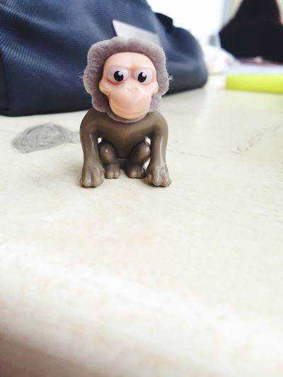 Katil maymun chucky