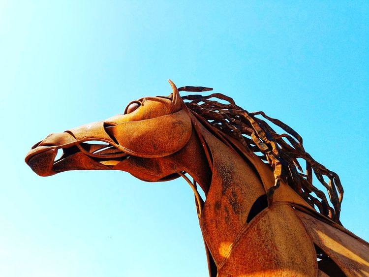 Iron Horse Horse Iron Sculpture Statue Blue HEAD Mane Metal Rust Close-up Sky Animal Mouth