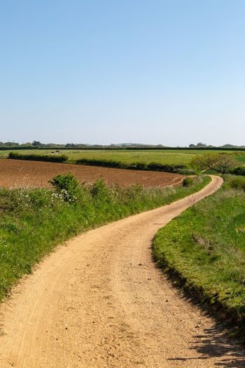 A pathway through Isle of Wight countryside, on a sunny spring day Isle Of Wight  Farm Sky Environment Landscape Clear Sky Road Land Tranquil Scene Dirt Road Plant Nature Tranquility Copy Space Grass Field Scenics - Nature Dirt Day No People The Way Forward Direction Outdoors