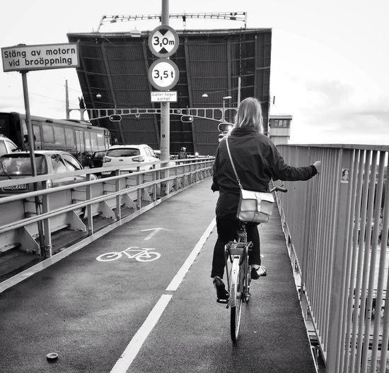 Bridge Bicycle
