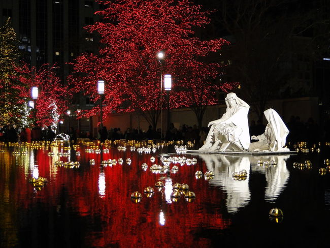 Wonderful winter night in downtown Salt Lake City at Temple Square. Christmas City Life Holidays Illuminated Mormon Temple Night Outdoors Salt Lake City Temple Square The Culture Of The Holidays Water