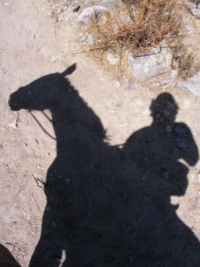 Sombra a Caballo Shadow Shadows And Silhouettes Shadow WalkingShadow-art Horse Riding Horse And Rider As One. Horse