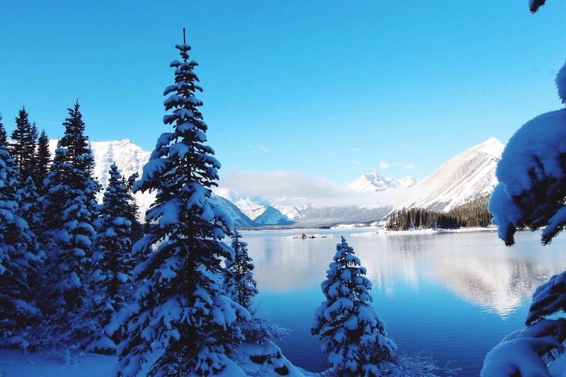 Nature Einfach So :) Urlaub Winter Wald Im Wald My Work Sky