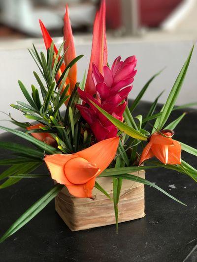 Bouquet De Fleurs Mini Bouquet De Fleurs Mini Composition Florale Composition Florale Fleurs Couleurs Vert Orange Rouge The Week On EyeEm