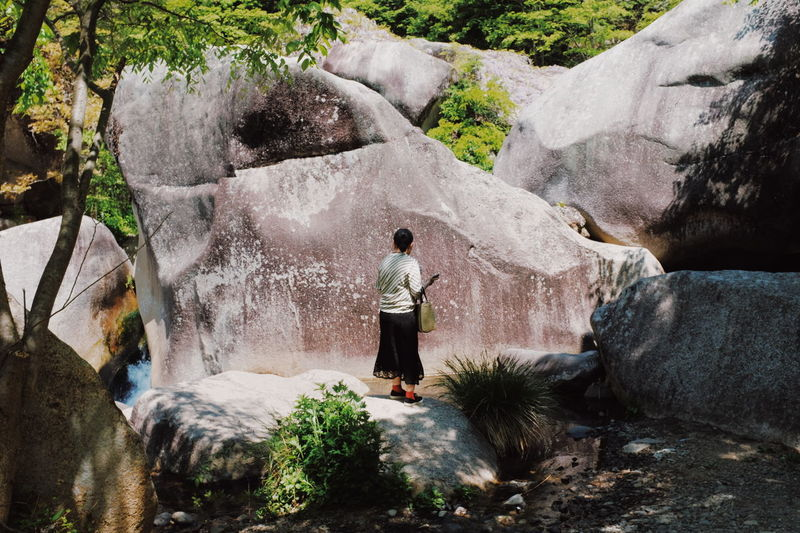 Rear view of man standing on rock against waterfall