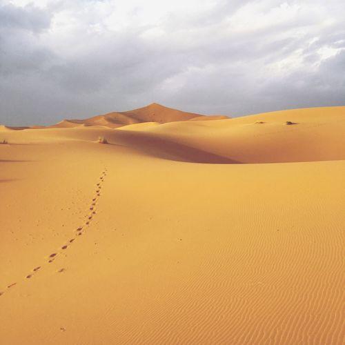 Sand dunes of