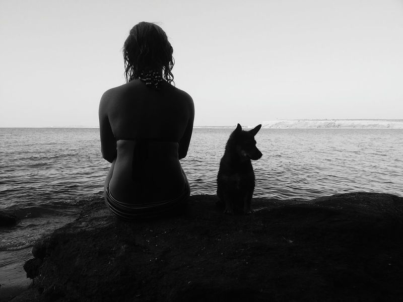 2015. summer. Clear Sky Beach Sitting Person Water Sea Pets One Animal Dog Rear View Calm Nature Beauty In Nature Blackandwhite TwoIsBetterThanOne