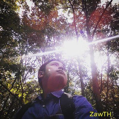 Go Green..´|`´|`´|` (ပါရမီကုန္းေတာ္၊ ပါရမီေက်ာင္း၊ ၁၇ ရက္ကြက္၊ ျပင္ဦးလြင္။ ) Igersmandalay Igersmyanmar Vscomyanmar Selfie Hill Nature Sky_of_theworld Signatureshots Pyinoolwin 1001silhouette Bsn_nature Ptk_sky Stunning_shots_world Bsn_features Sky_talking Best_Silhouette Gorgerous Worldcaptures Shareyourparadise Ig_daily_nature Nothingisordinary Cool_sunshotz Natureshot  Burmeseguy Nepaleseguy