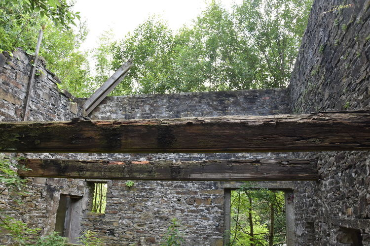 Low angle view of abandoned building against trees in forest