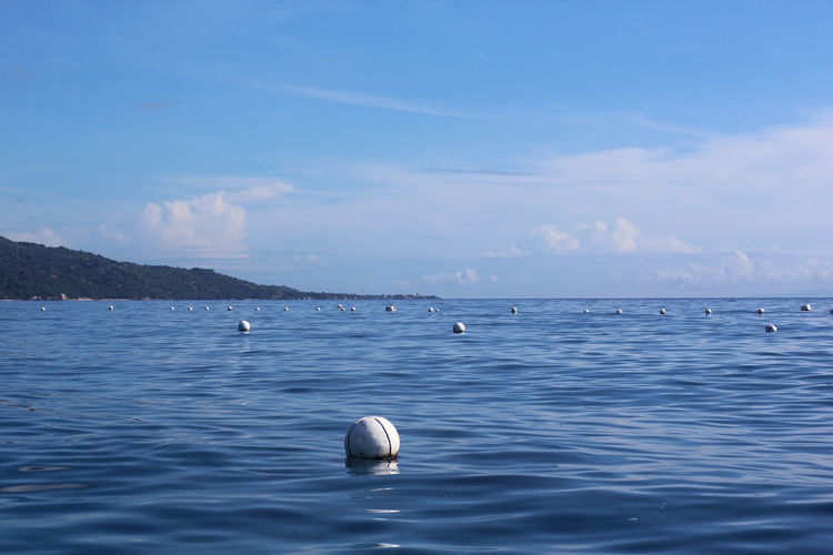 Cebu Oslob, Cebu Philippines Beauty In Nature Blue Buoy Day Nature No People Outdoors Scenics Sea Sky Tranquility Water