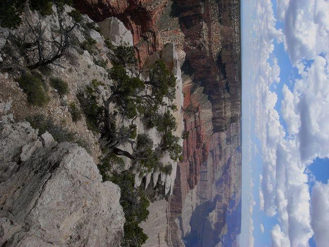 EyeEmNewHere Beauty In Nature Colorado Canyon