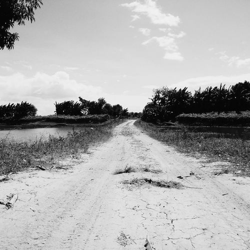 Outdoors Landscape Beauty In Nature Nature Road Roadscenes Rough Road Black And White Black And White Photography